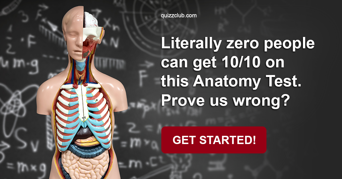 Literally Zero People Can Get 1010 Trivia Quiz Quizzclub