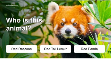 animals Quiz Test: Only 1 In 45 Adults Can Still Name All These Common Animals - Can You?