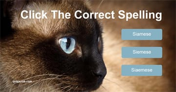Quiz Test: Can You Guess The Correct Spelling of These Cat Breeds?