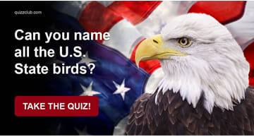 Geography Quiz Test: Can You Name All The U.S. State Birds?