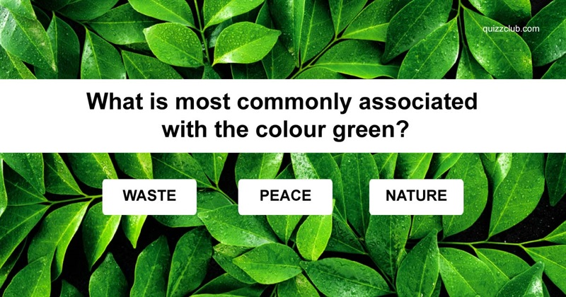 Geography Quiz Test: Do you know what colors mean around the world?