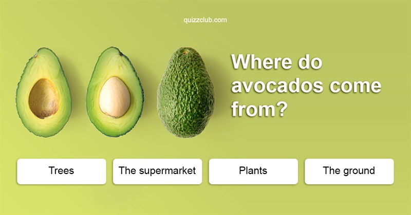 Nature Quiz Test: How are these fruit and vegetables grown?