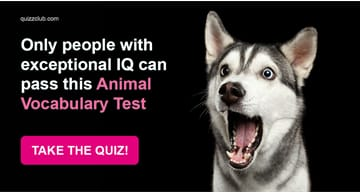animals Quiz Test: Only People With Exceptional IQ Can Pass This Animal Vocabulary Test