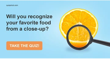 Quiz Test: Will You Recognize Your Favorite Food From a Close-Up?