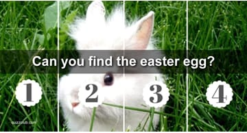 vision Quiz Test: Can You Find The Easter Egg We've Hidden In Each Of These Photos Of Adorable Bunnies?