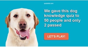 animals Quiz Test: We Gave This Dog Knowledge Quiz To 50 People And Only 2 Passed