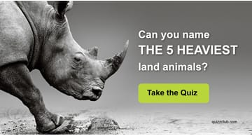 Nature Quiz Test: Can you name the 5 heaviest land animals?