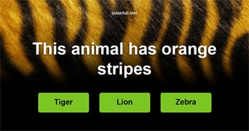 animals Quiz Test: Can you recognize the animal by one hint only?