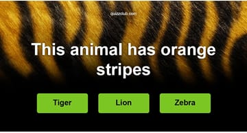 Quiz Test: Can you recognize the animal by one hint only?