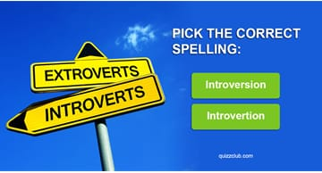 Quiz Test: 9 In 10 Introverts Got 23/23 In This Spelling Test