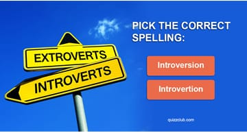 language Quiz Test: 9 In 10 Introverts Got 23/23 In This Spelling Test