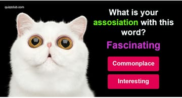Quiz Test: Only PhDs Can Pass This Word Association Quiz