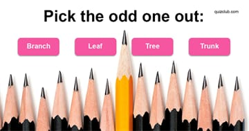 Quiz Test: No One Can Score 8/15 In This IQ Test