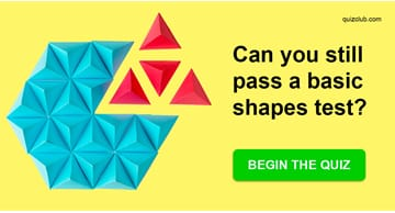 Science Quiz Test: This Basic Shapes Test Is Harder For Most Adults Than It Should Be