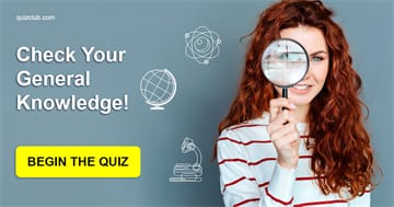 knowledge Quiz Test: Attention: This Test Will Reveal The Whole Truth About Your Knowledge!