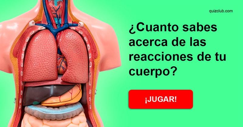 Сiencia Quiz Test: ¿CUANTO SABES ACERCA DE LAS REACCIONES DE TU CUERPO?