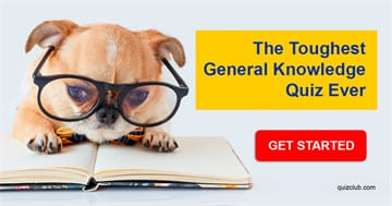 IQ Quiz Test: Nobody Can Score At Least 5 Out Of 10 In This Difficult Mixed Knowledge Quiz