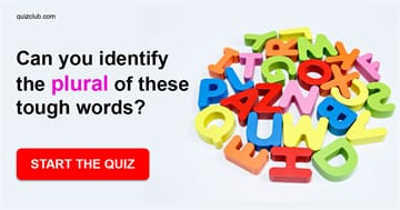 language Quiz Test: Only Americans With An IQ Higher Than 144 Can Identify The Plural Of These Tough Words