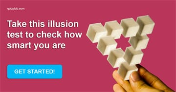 IQ Quiz Test: What Is Your Level Of Education? Take This Illusion Test To Find Out!