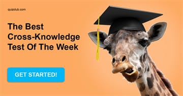 IQ Quiz Test: The best cross-knowledge test of the week