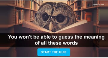 language Quiz Test: You won't be able to guess the meaning of all these words
