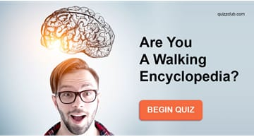 knowledge Quiz Test: Are You A Walking Encyclopedia?