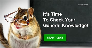 knowledge Quiz Test: It's Time To Сheck Your General Knowledge!