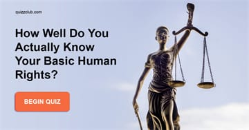 Society Quiz Test: How Well Do You Actually Know Your Basic Human Rights?