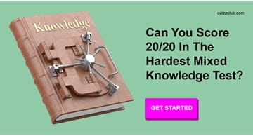 knowledge Quiz Test: Can You Score 20/20 In The Hardest Mixed Knowledge Test?