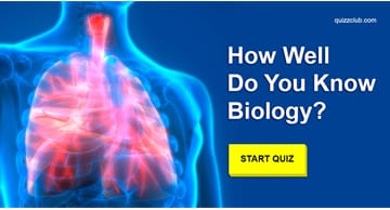 Science Quiz Test: Can You Pass A High School Biology Test?