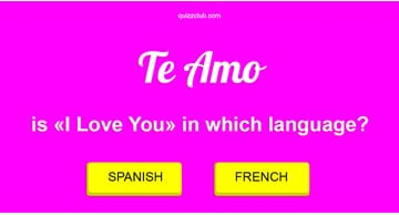 funny Quiz Test: How Many Languages Can You Say I Love You In?