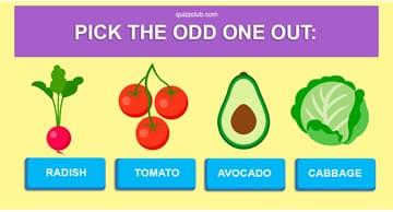 IQ Quiz Test: Can You Score 10/10 In This IQ Trivia?