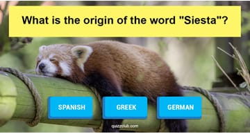 language Quiz Test: Can You Correctly Name The Origin Of 10 Common Words?
