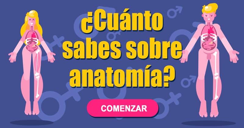 Сiencia Quiz Test: ¿Cuánto sabes sobre anatomía?