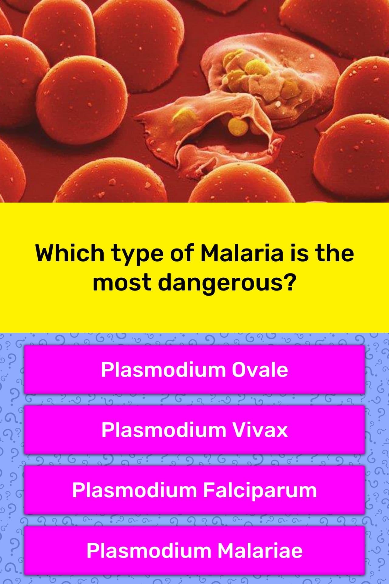 what type of malaria