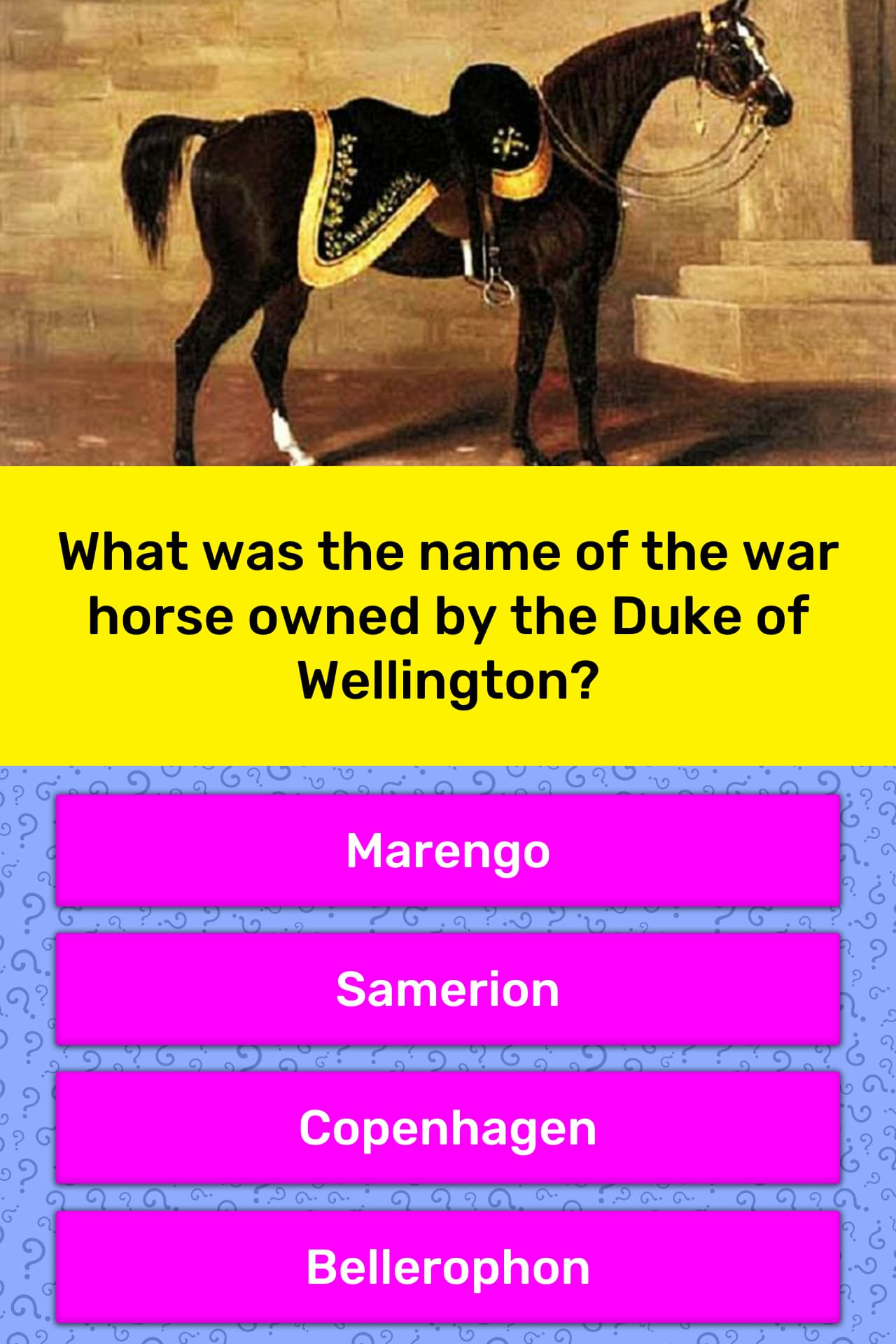 what is the name of the horse in war horse