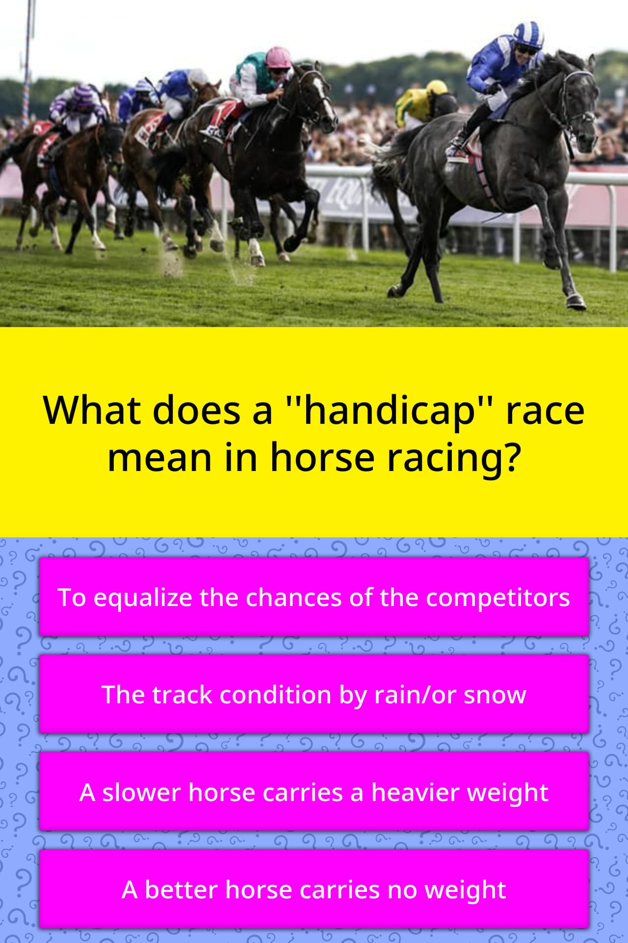 What Does Sp Mean In Racing