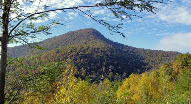 Geography Trivia Question: Where in the USA is Pisgah National Forest located?