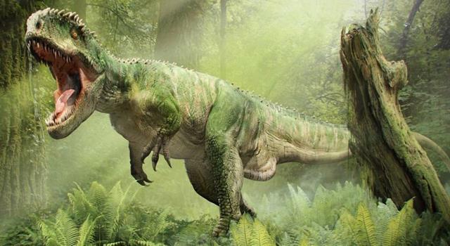 Naturaleza Trivia: ¿En qué período geológico aparecieron los dinosaurios?