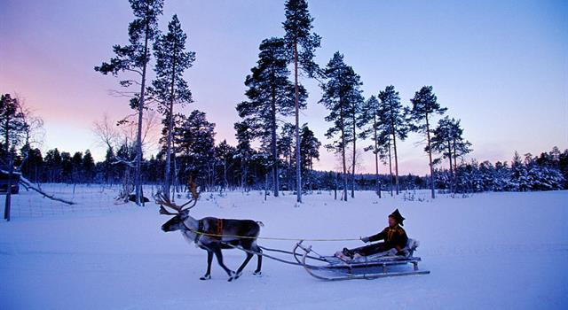 Sport Trivia Question: What is the national sport of Finland?