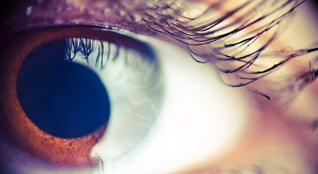 Science Trivia Question: What is the typical lifespan of a human eyelash?