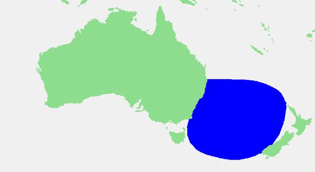 Geography Trivia Question: Which sea separates Australia and New Zealand?