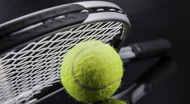 Sport Trivia Question: Who was the Wimbledon Gentlemen's Singles Champions runner-up in 2001?
