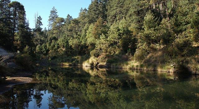 Geografía Trivia: ¿Cuál fue el primer Parque Nacional  decretado en México?