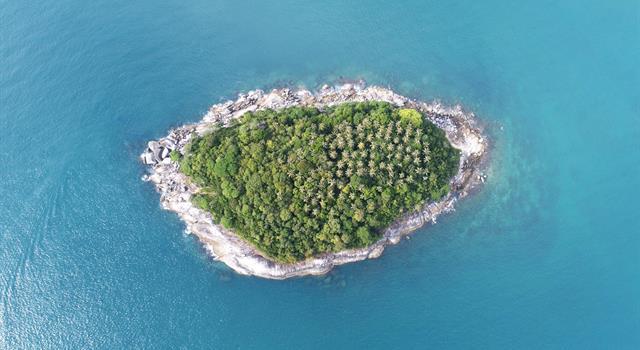 Сiencia Pregunta Trivia: ¿Dónde se ubican los islotes de Langerhans?