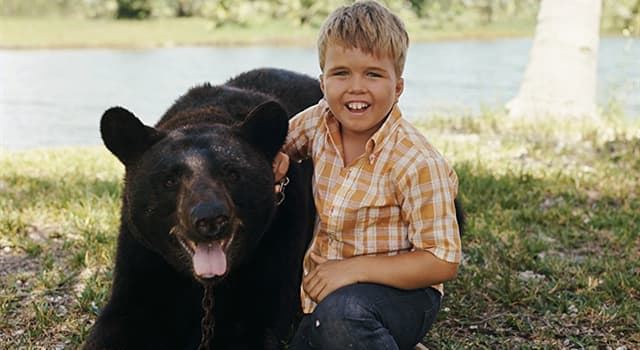 """Movies & TV Trivia Question: On the wildlife U.S. TV adventure series """"Gentle Ben"""", where does Ben (the bear) and his human family live?"""