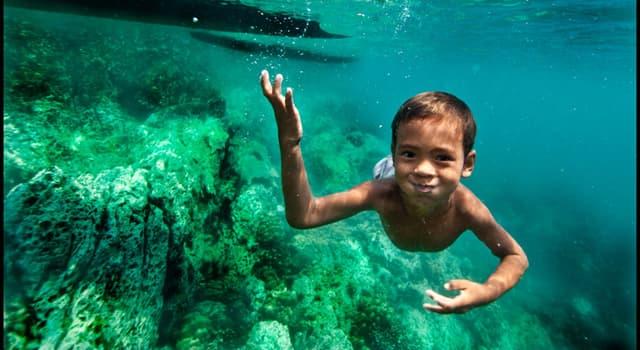 Сiencia Trivia: ¿Qué capacidad especial tienen los niños de la tribu Moken, en el mar de Andaman?