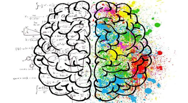Сiencia Trivia: ¿Qué es la dislexia?