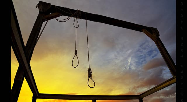 History Trivia Question: Who was the official person given the task to carry out the last public hanging in the United States?