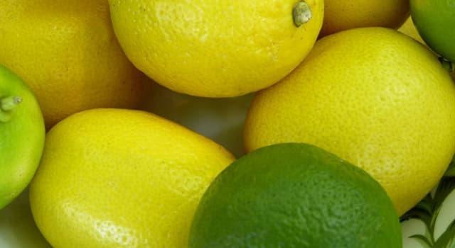 Naturaleza Pregunta Trivia: ¿Las limas son los limones recogidos temprano?
